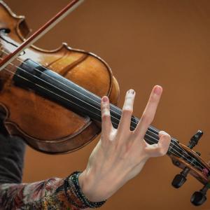 Classique doigte de violon