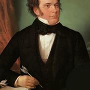Franz Schubert 1875